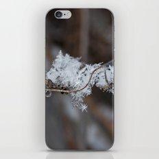 Delicate Snowflake iPhone & iPod Skin