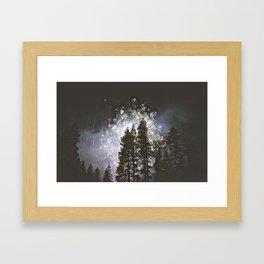 Fireworks In the night sky Framed Art Print