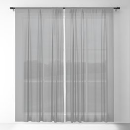Dunn & Edwards 2019 Trending Colors Storm Cloud (Medium Gray) DE6362 Solid Color Sheer Curtain