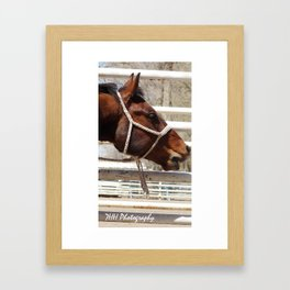 Bless You!  Framed Art Print