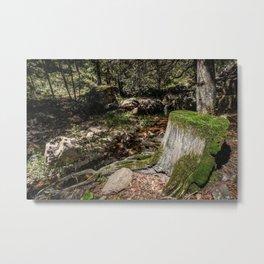 Tree Die Metal Print