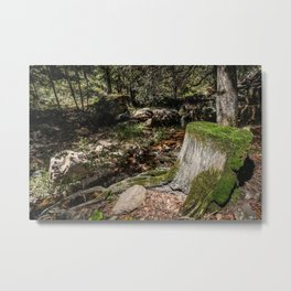 Tree Die Metal Print