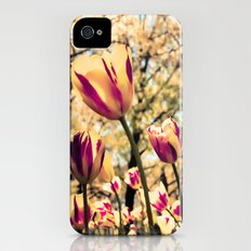 Tulips Tulips Everywhere iPhone (4, 4s) Slim Case