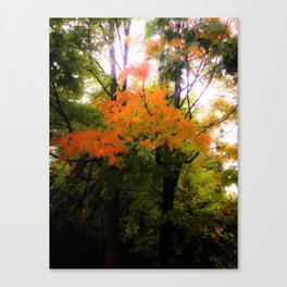 Autumn Magick Canvas Print