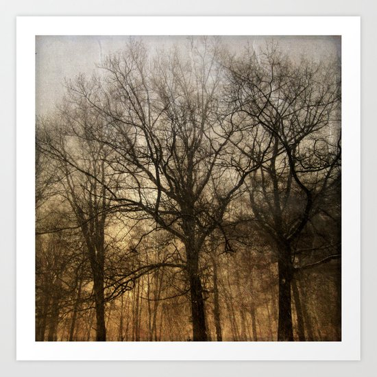 trees in a storm Art Print