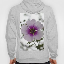 Blooming Tree Mallow Hoody