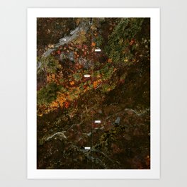 Chairlifts in autumn Art Print