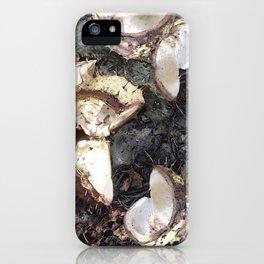 Autumn shells iPhone Case