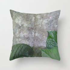 Urban Plant hydrangea leaves on concrete wall Throw Pillow