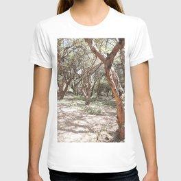 Sacsayhuaman trees T-shirt