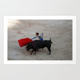 The Bullfighter Art Print