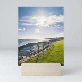 Irish landscape Mini Art Print