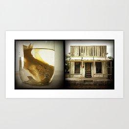 Fish:White House Art Print