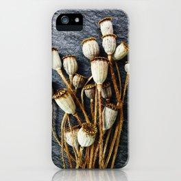 Pods iPhone Case