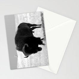 Bison On Open Range Stationery Cards