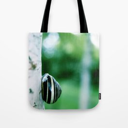Snail on Silver Birch Tote Bag