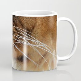 Whiskers. Coffee Mug