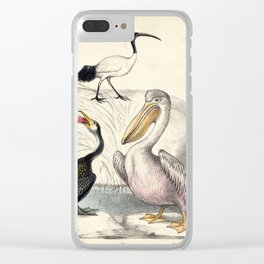 A cormorant, an ibis and a pelican standing near the water. Coloured chalk lithograph. Clear iPhone Case