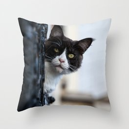 Curious Black and White Cat Throw Pillow
