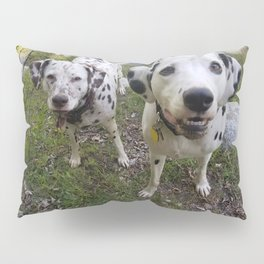 Creek Diggers Pillow Sham
