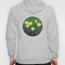 Spring is Coming Hoody