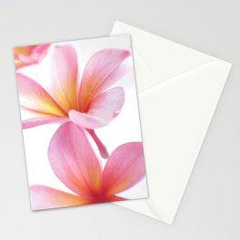 Pink Frangipani Stationery Cards