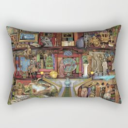 The Museum Shelf Rectangular Pillow