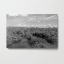 Southeast Texas Marshes Metal Print