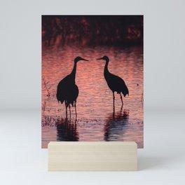 Sandhill Cranes, Bosque, New Mexico Mini Art Print