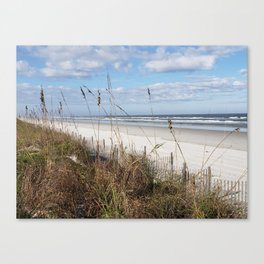 Screen of Sea Oats Canvas Print