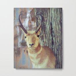 Urban Animal Metal Print