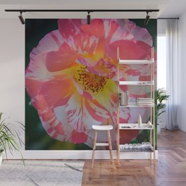 Carnival Rose by Teresa Thompson Wall Mural