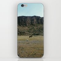 pony iPhone & iPod Skins featuring Rock Pasture Pony by Kevin Russ