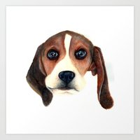 beagle Art Prints featuring Beagle by Carmen Lai Graphics