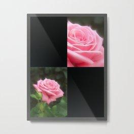 Pink Roses in Anzures 3 Blank Q2F0 Metal Print