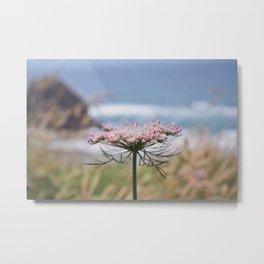 Pink Colored Summer Metal Print