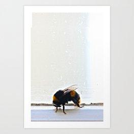 Buzzing Inside Art Print