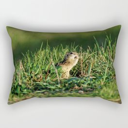 Thirteen-lined Ground Squirrel Eating - Photography Rectangular Pillow