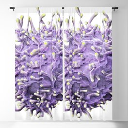 SEM ACTIVATED T LYMPHOCYTE MICROSCOPIC IMAGE MEDICAL LABORATORY SCIENTIST Blackout Curtain