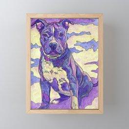Rainbow Blue Nose Pitbull Framed Mini Art Print