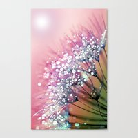 rainbow Canvas Prints featuring rainbow dandelion by Joke Vermeer