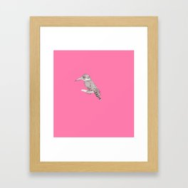 pink kingfisher bird Framed Art Print