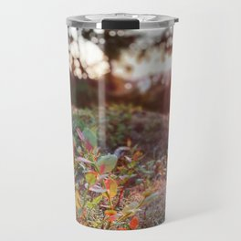 Evening glow in the forest Travel Mug