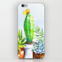 Succulent Trio iPhone Skin