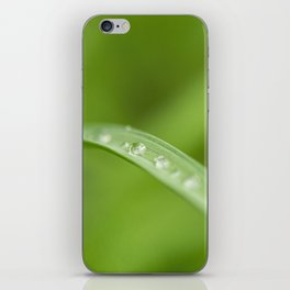 Water Droplets iPhone Skin