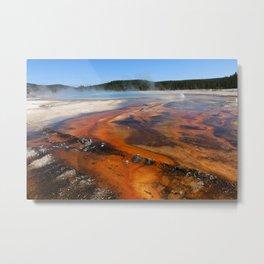 Nature Is Amazing Metal Print