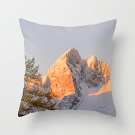 Spica Throw Pillow