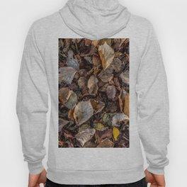 Fallen autumnal leaves Hoody