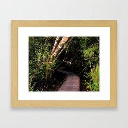 """The Franklin–Gordon Wild Rivers National Park""  Framed Art Print"