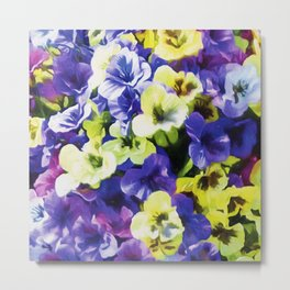 Colorful Pansies Metal Print